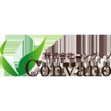 株式会社 コンヴァノ